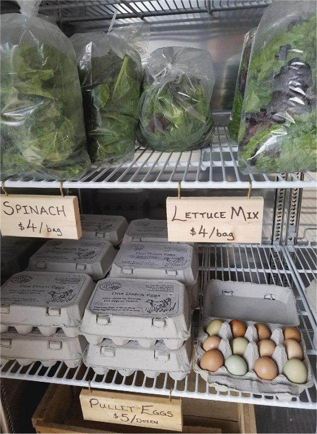 eggs-lettuce