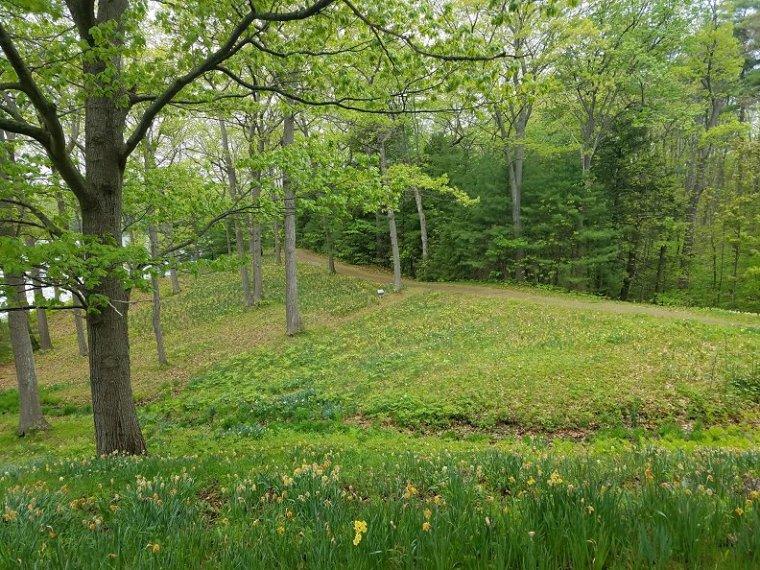 Lauren Hill Cemetery Saco Maine (33)