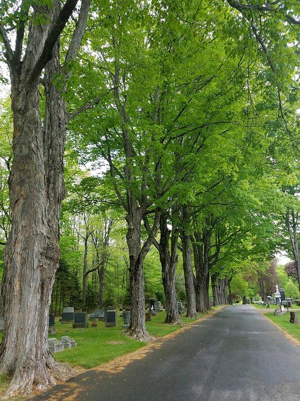 Lauren Hill Cemetery Saco Maine (34)