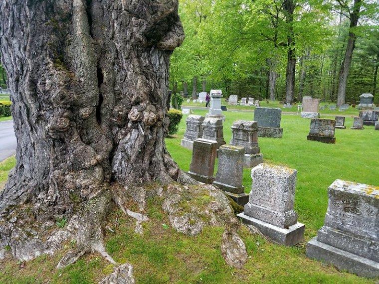 Lauren Hill Cemetery Saco Maine (36)