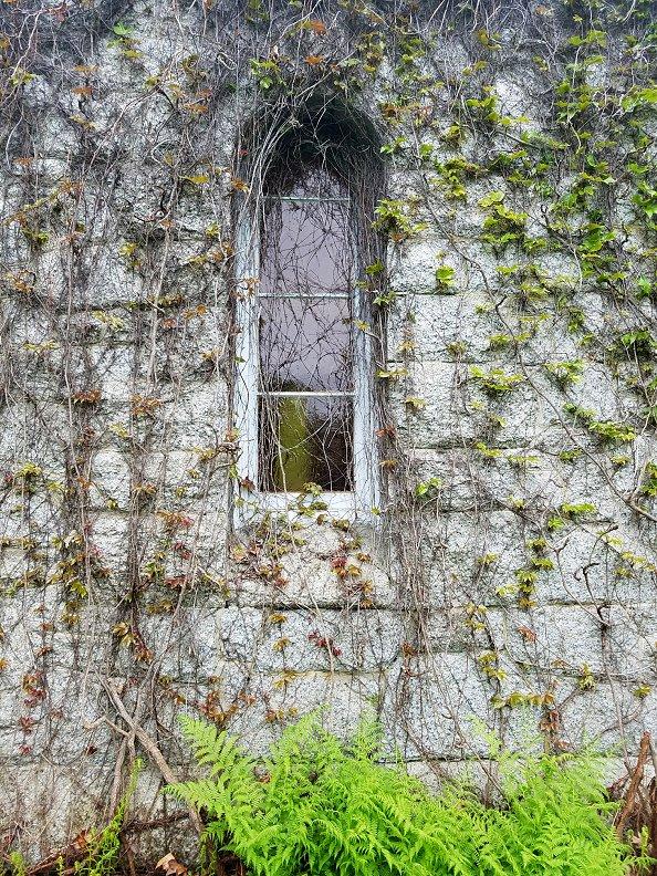 Lauren Hill Cemetery Saco Maine (4)