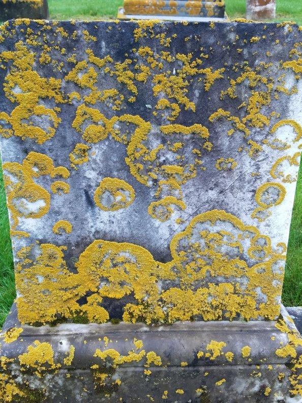 Lauren Hill Cemetery Saco Maine (7)