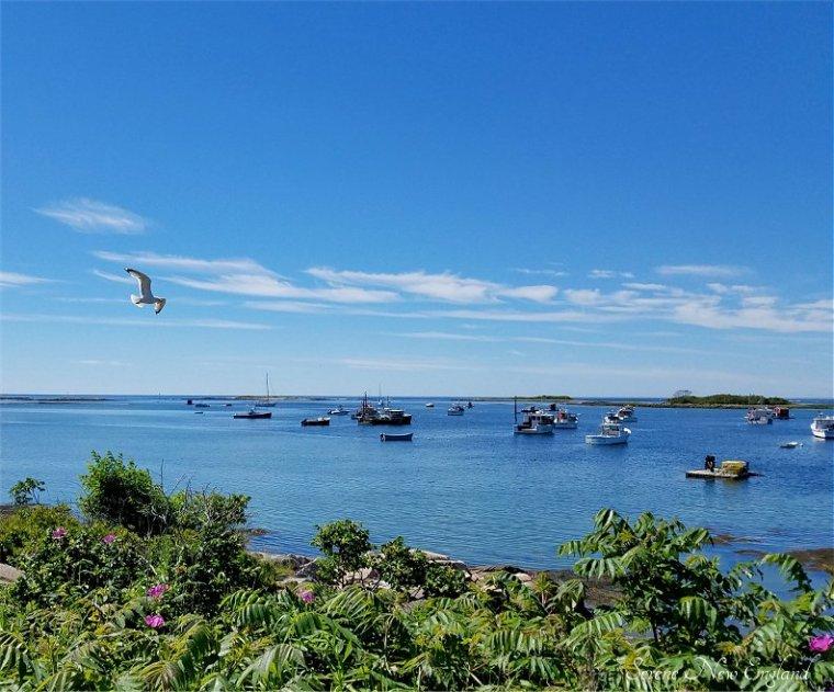 Kennebunkport & Cape Porpoise Maine (23)