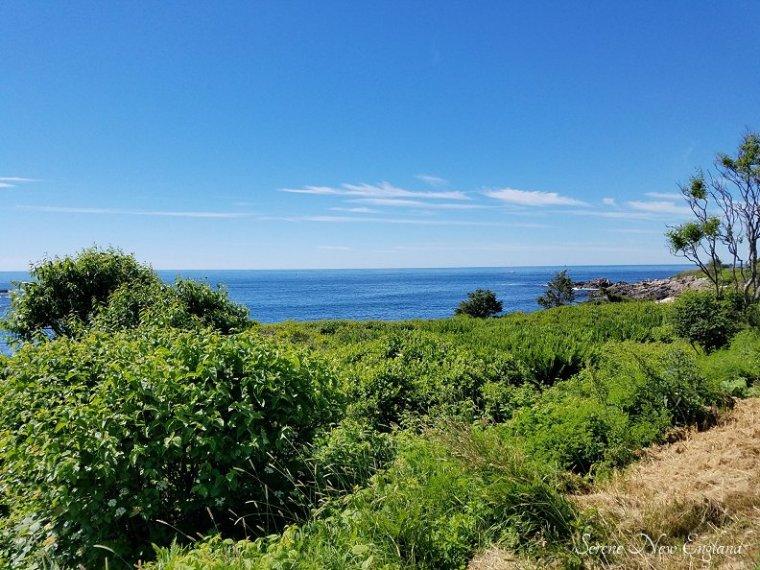 Kennebunkport & Cape Porpoise Maine (3)