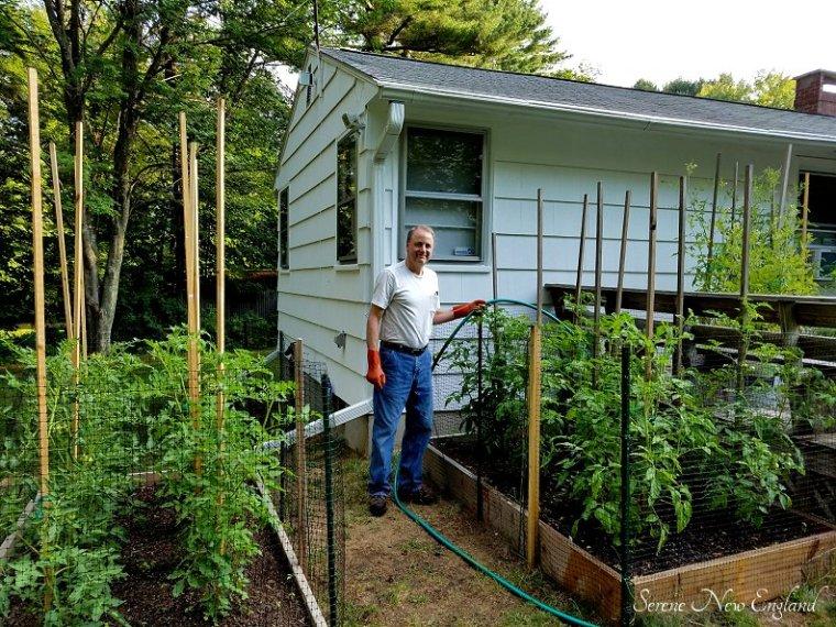 July Garden Update (3)