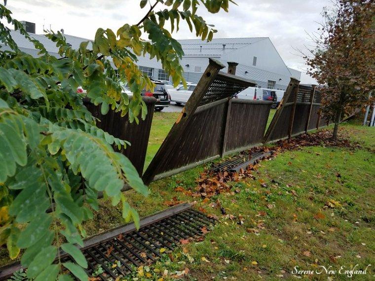 October Storm (11).jpg