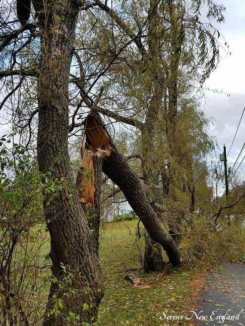 October Storm (9).jpg