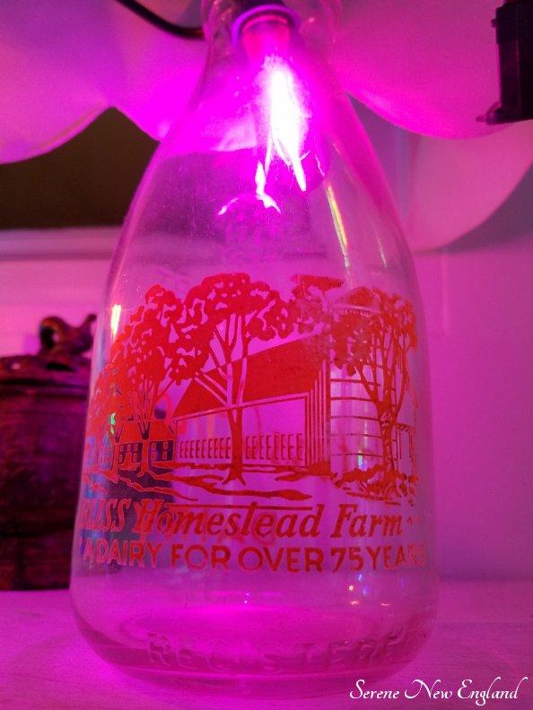Vintage Christmas Lights Edison Bulbs Mason Jars Bottles (5)