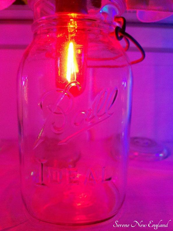 Vintage Christmas Lights Edison Bulbs Mason Jars Bottles (7)