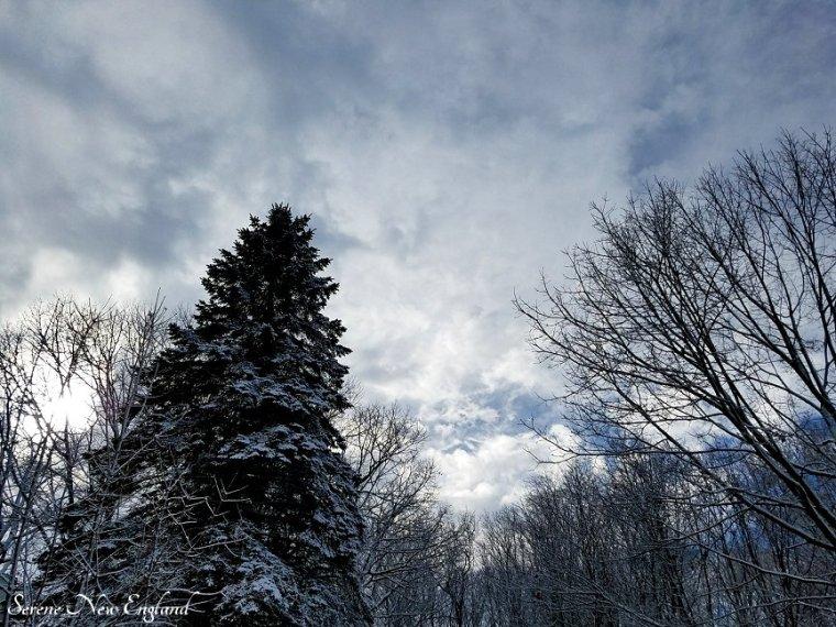 Winter in Maine (5).jpg