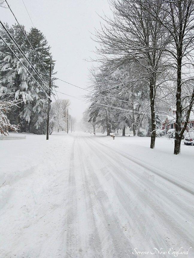 Maine March Blizzard Winter Wonderland (15)
