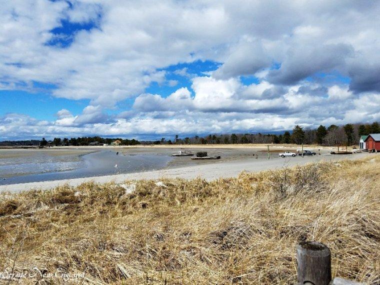 Prouts Neck Scarborough Maine (5)
