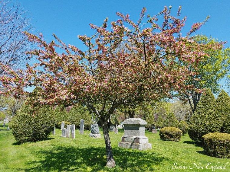 Laurel Hill Cemetery Saco Spring 2018 (19)