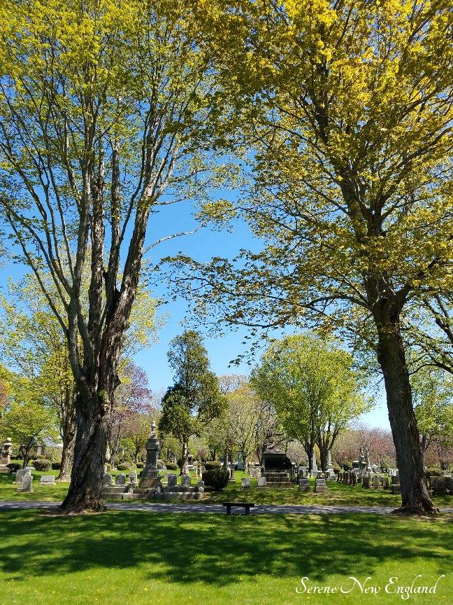 Laurel Hill Cemetery Saco Spring 2018 (34)