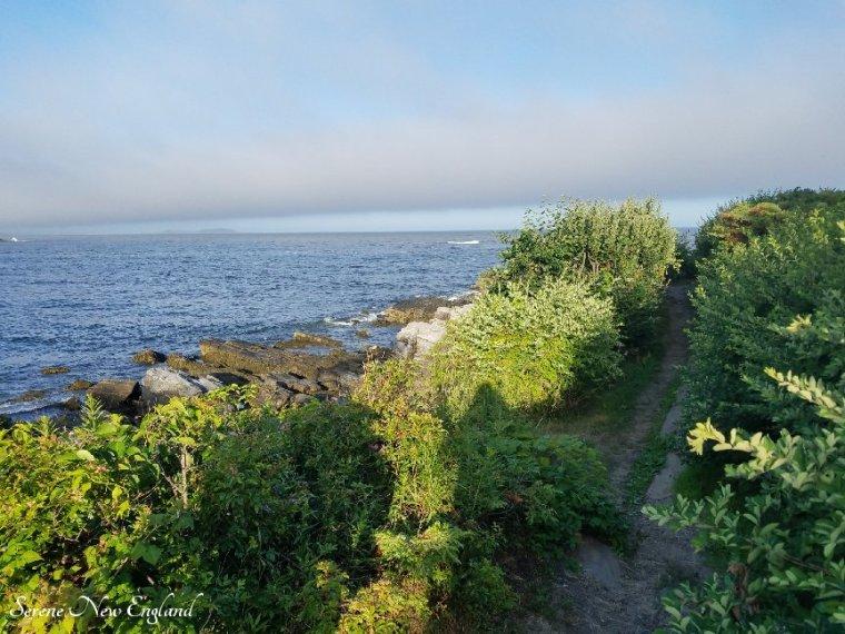 Prouts Neck Cliff Walk Black Point Inn Scarborough Maine (11).jpg