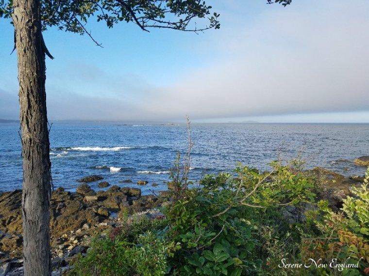Prouts Neck Cliff Walk Black Point Inn Scarborough Maine (13).jpg