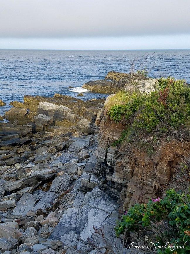 Prouts Neck Cliff Walk Black Point Inn Scarborough Maine (9).jpg