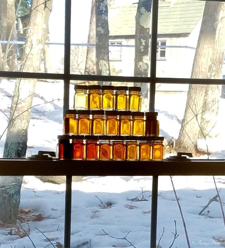 Maine Maple Sunday at Merrifield Farm Gorham (10)