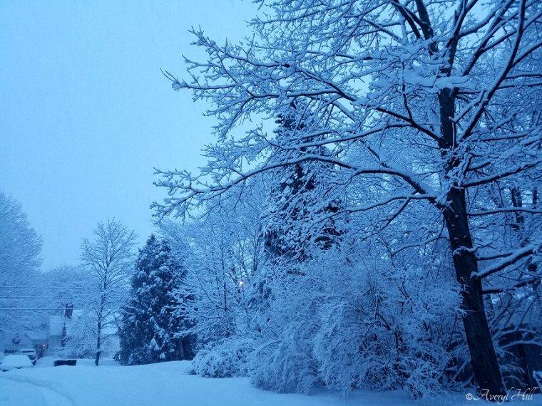 Snowfall at Daybreak in Maine (10)