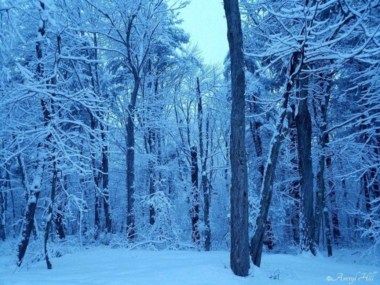 Daybreak Snowfall Simple Living New England