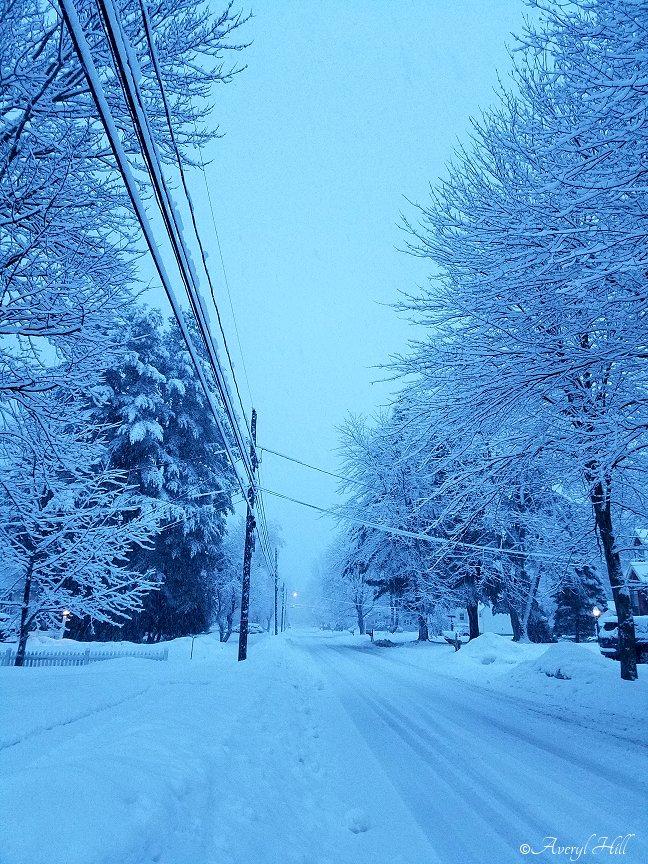 Snowfall at Daybreak in Maine (12)