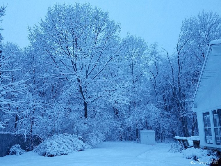 Snowfall at Daybreak in Maine (14)