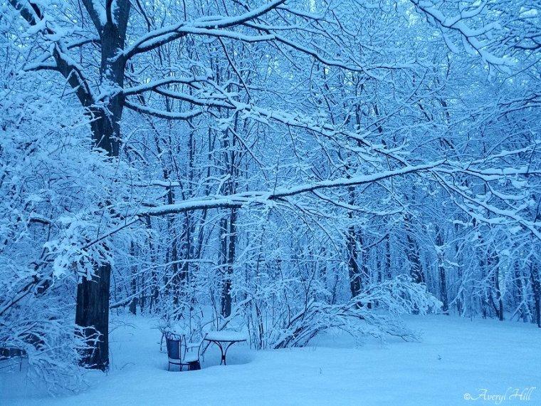 Snowfall at Daybreak in Maine (7)