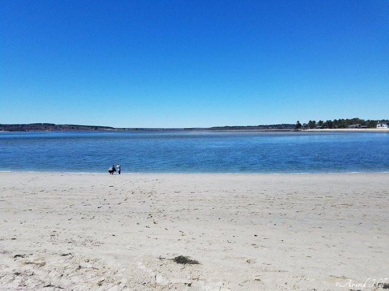 Ferry Beach (2)