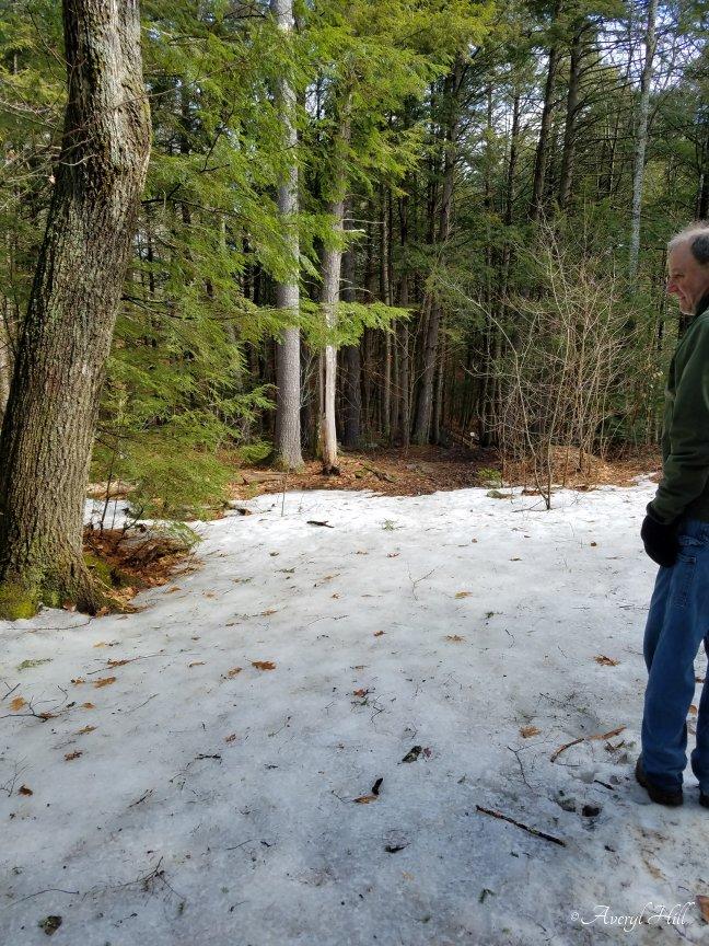 Fuller Farm Scarborough Maine Spring Waterfall Trail (10).jpg