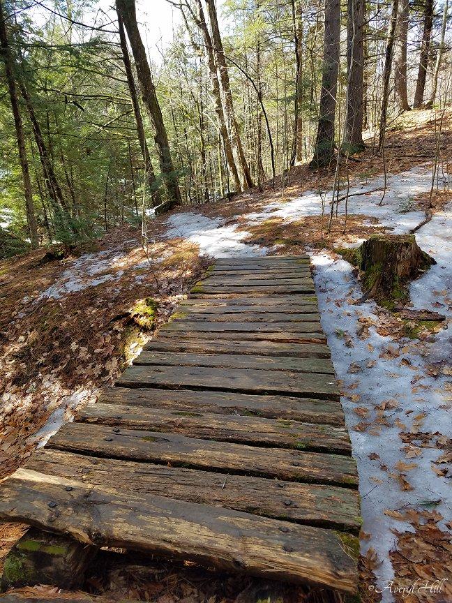 Fuller Farm Scarborough Maine Spring Waterfall Trail (23).jpg