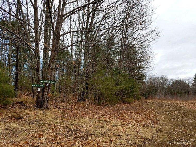 Fuller Farm Scarborough Maine Spring Waterfall Trail (5).jpg