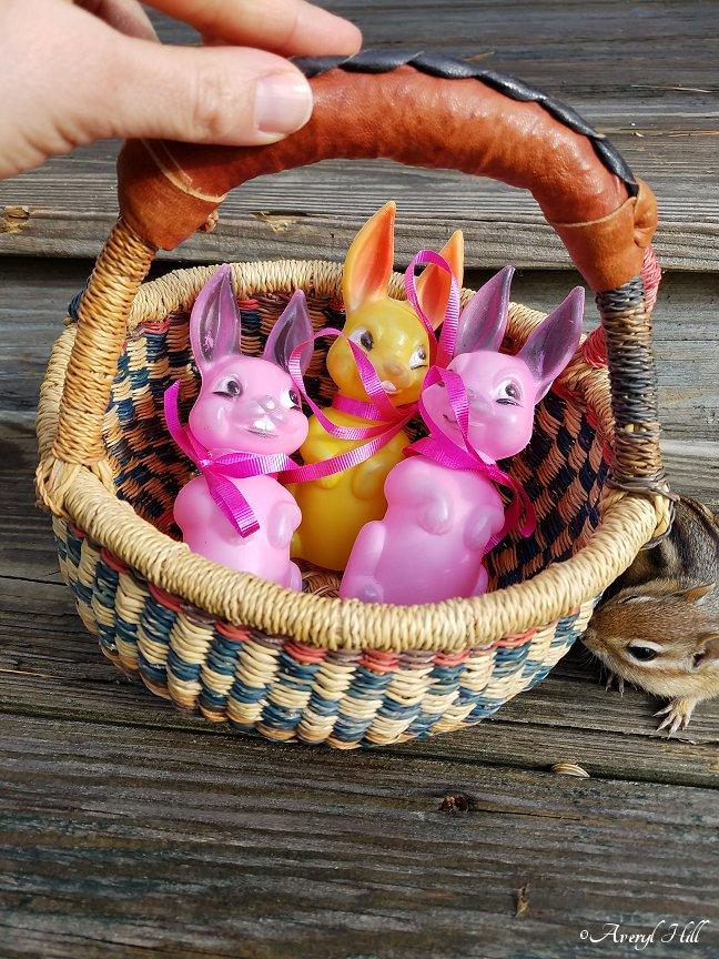 Gods Creatures Easter (1).jpg