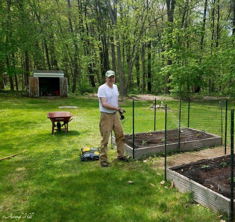 Maine Gardening (1).jpg