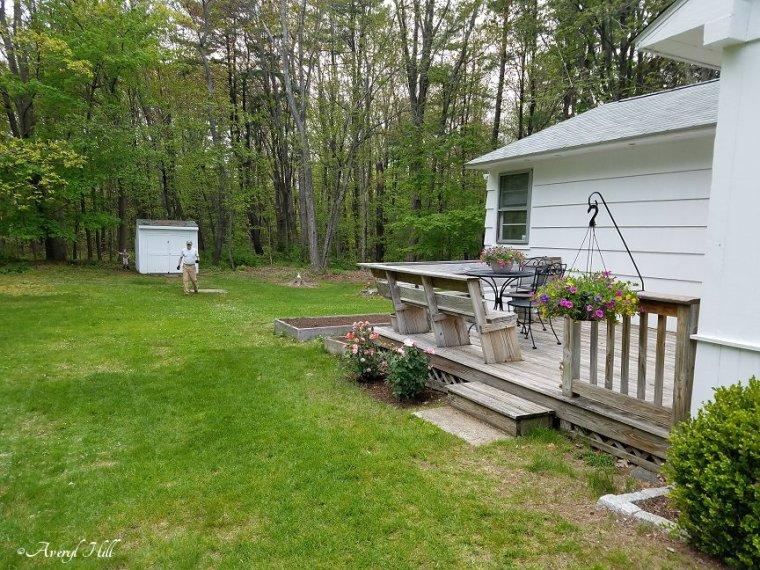 Maine Gardening (11).jpg