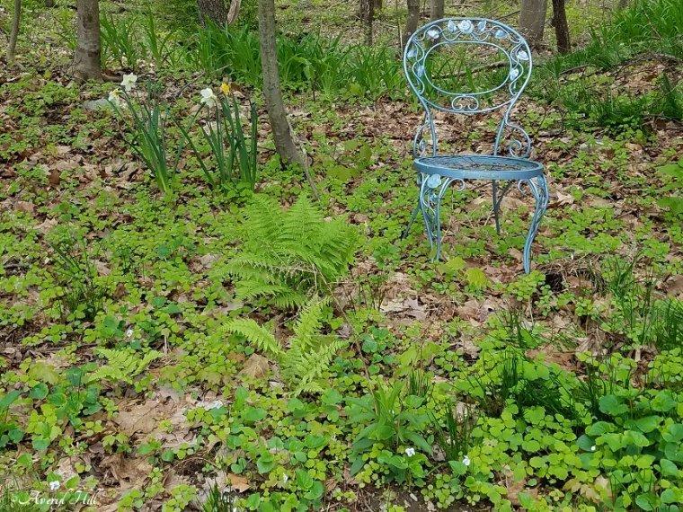Maine Gardening (9).jpg