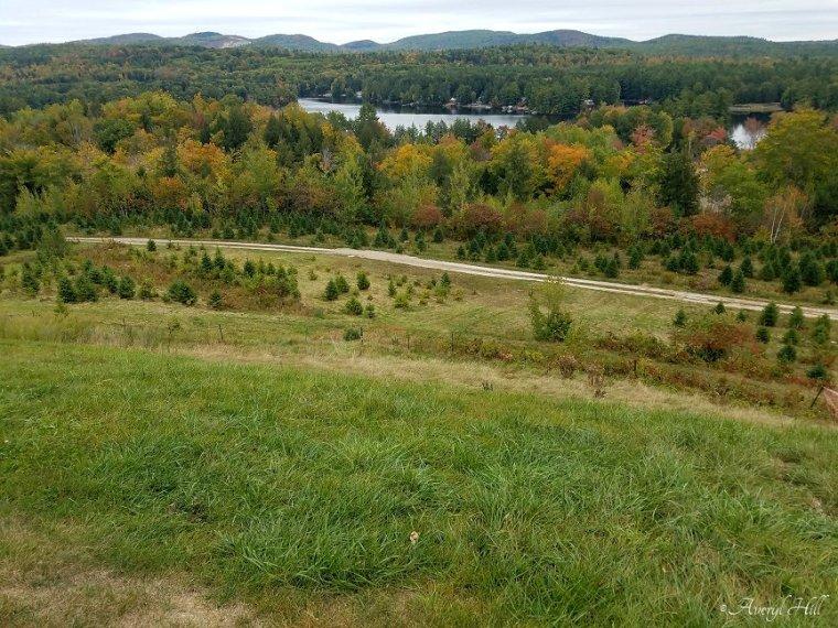Carroll Scenic Overlook Limerick Maine (2).jpg