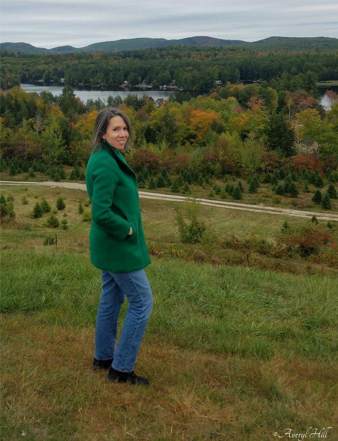 Carroll Scenic Overlook Limerick Maine (6).jpg