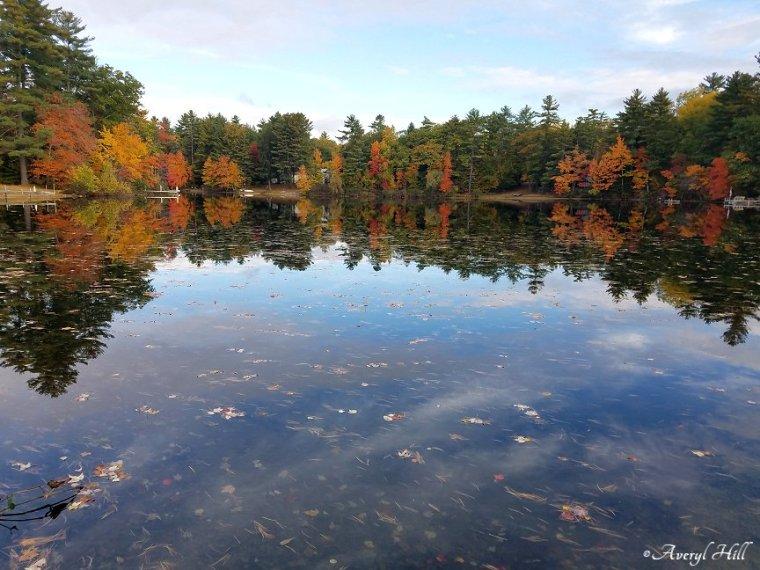 Maine Peak Foliage Leaf Peeping 2019 (22)