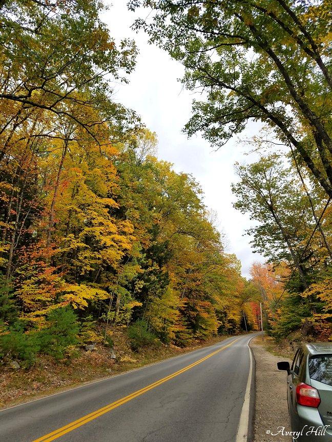Maine Peak Foliage Leaf Peeping 2019 (33)