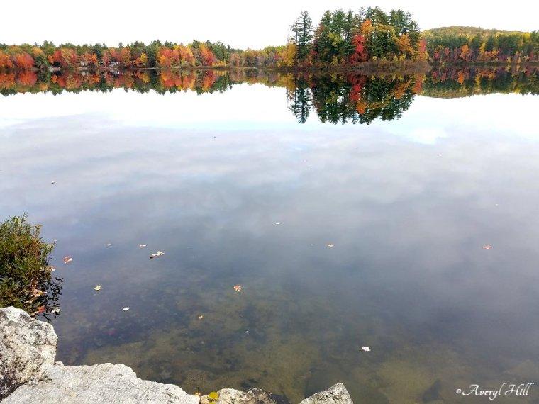 Maine Peak Foliage Leaf Peeping 2019 (36).jpg