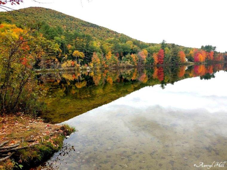 Maine Peak Foliage Leaf Peeping 2019 (39).jpg