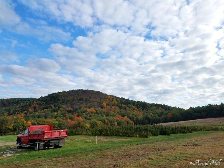 Maine Peak Foliage Leaf Peeping 2019 (5)