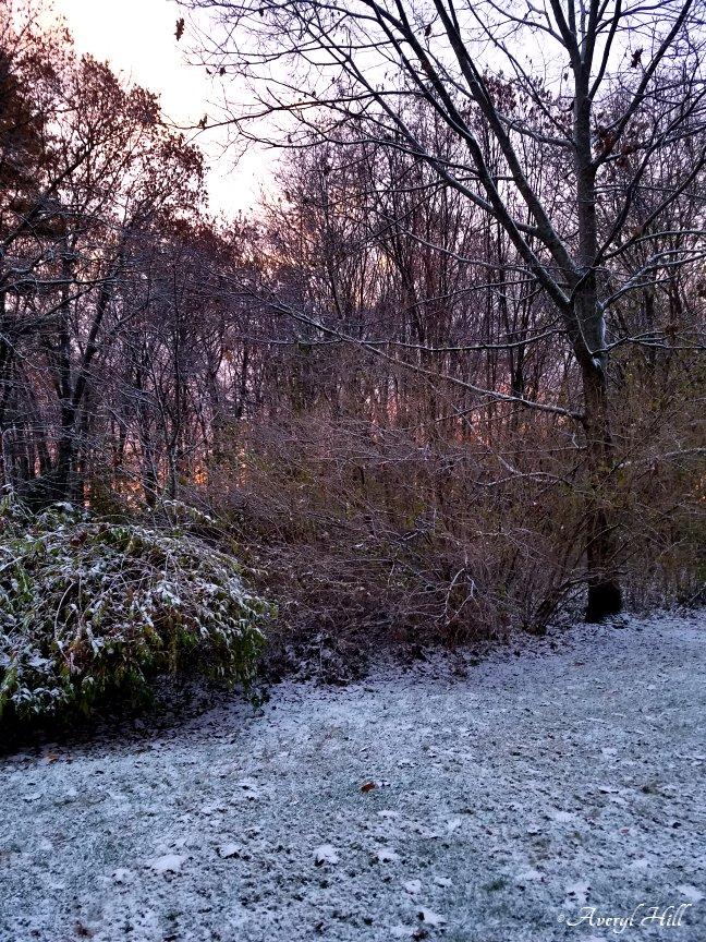 First Snowfall (8)