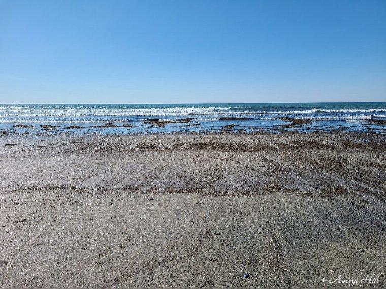 Higgins Beach Scarborough Maine (10)