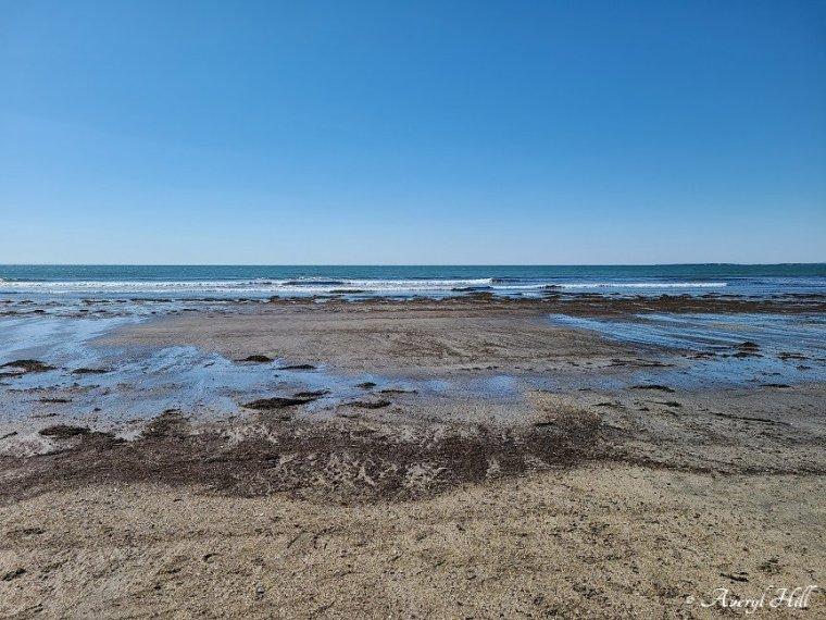 Higgins Beach Scarborough Maine (4)